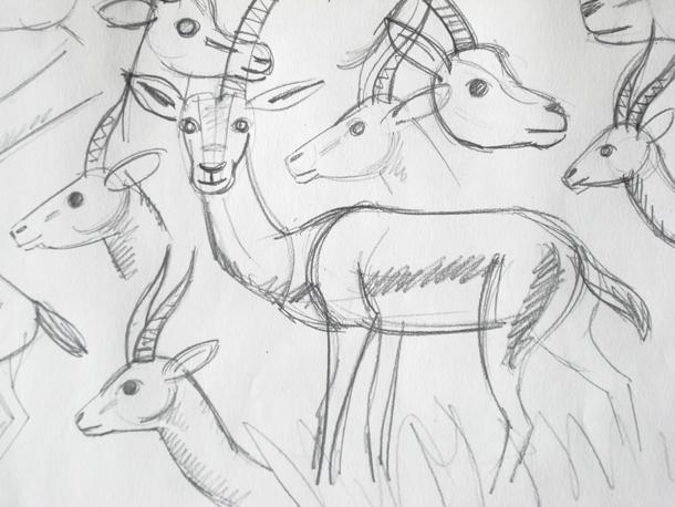 gazelles3