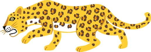 40leopard