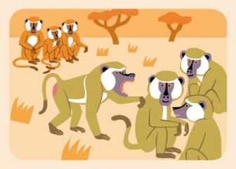babouins2