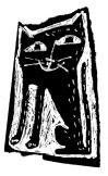 chat noir 3
